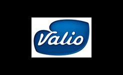 Valion logo.