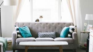 Olohuone, jossa harmaa sohva, turkooseja sohvatyynyjä. Sohvan selkänojalla istuu valkoharmaa kissa.